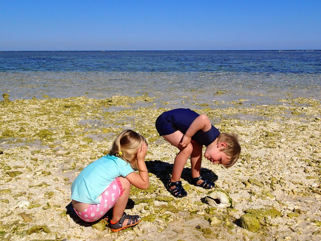 Little researchers inspecting an empty clam shell.